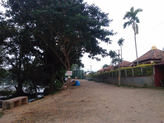 Dubare Inn Resort: Right side cottages and left side river cauvery