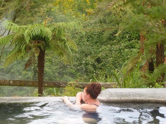 Waikite Valley Thermal Pools: Pool with a view