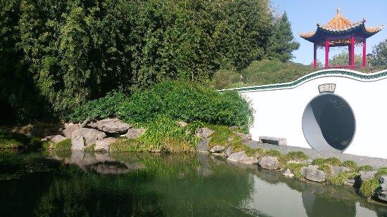 Hamilton, Nova Zelândia: Japanese garden