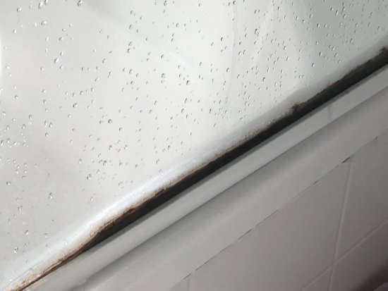 Labrador, Austrália: mould around the shower