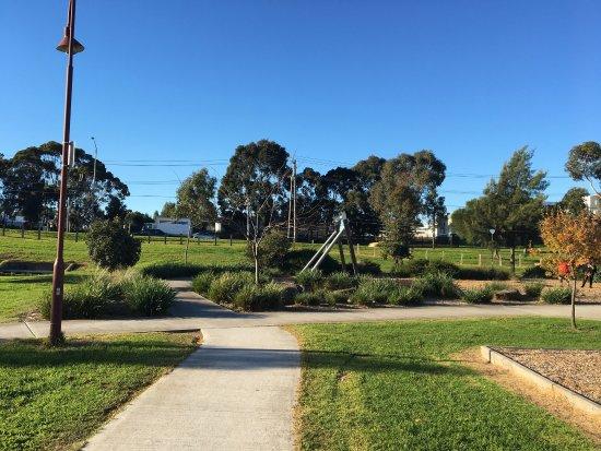 Johnstone Street Reserve Playground
