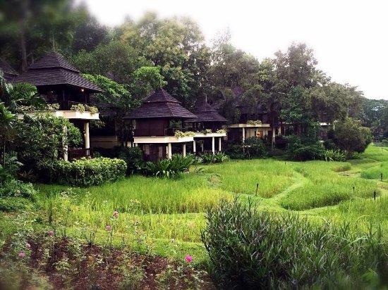 Chiang Mai by Four Seasons - Luxury Hotels | Four Seasons