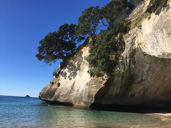Whitianga, Nya Zeeland: Explore Paradise