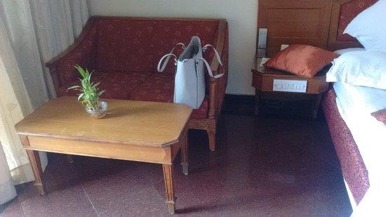 Hotel Sandesh The Prince Photo