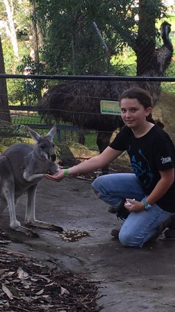 Nowra, Australien: photo0.jpg