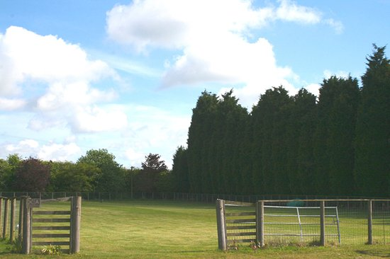 Brome, UK: Leisure paddock for sports and games, Suffolk Glamping with fire pit, hot tub and sauna.