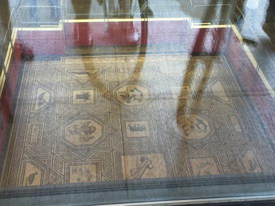 Roman-German Museum (Romisch-Germanisches Museum) : photo0.jpg