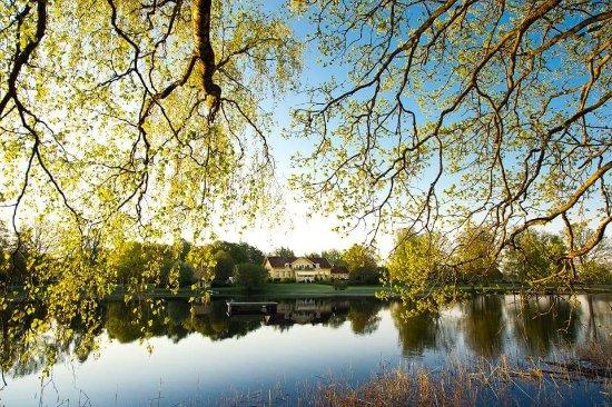 Lagan, Sweden: FB_IMG_1495534807037_large.jpg