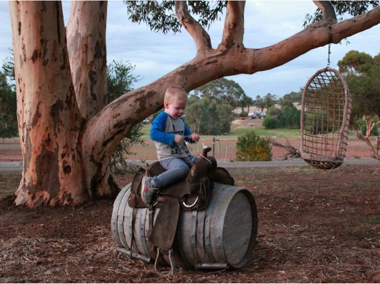 Seppeltsfield, Australia: Some of the play equipment available for kids and guests