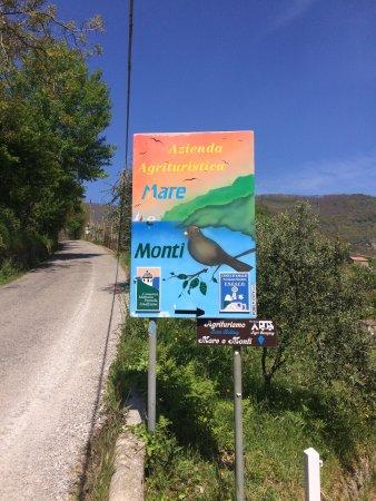 Tramonti, Itália: Azienda , agriturismo e vicinanze