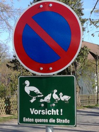 Turingia, Alemania: IMG_20170424_171826_large.jpg