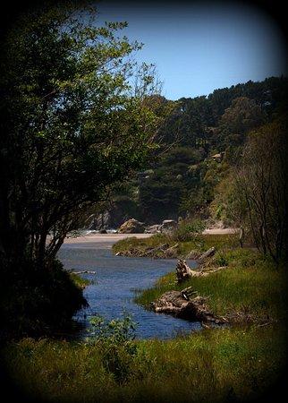 Muir Beach, كاليفورنيا: Muir Beach
