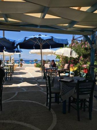495347051c07 Bellissimo Greek Restaurant   Cafe