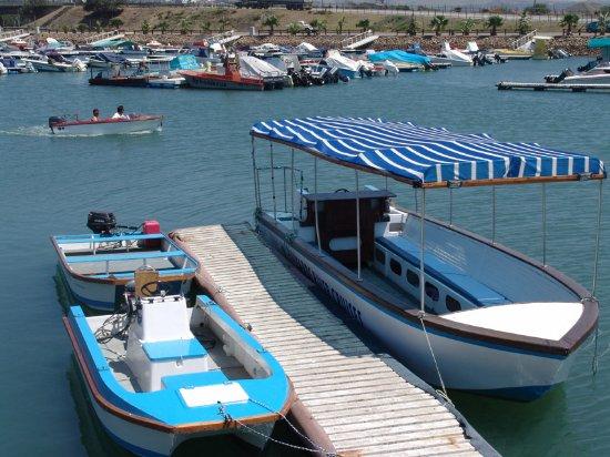 Halyards Hotel: Daily Boat Cruises
