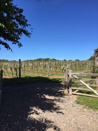 Biddenden, UK: Entrance to the Vineyard