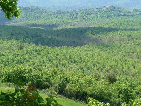 Monteroni d'Arbia, Italia: panorama