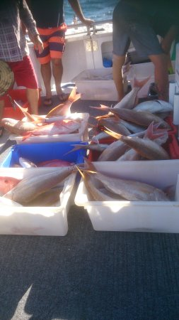 Coral Bay, Australia: Our catch for the day.