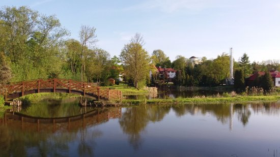 Bartlowizna Hotel and Restaurant: Looking back at the grounds from the marsh