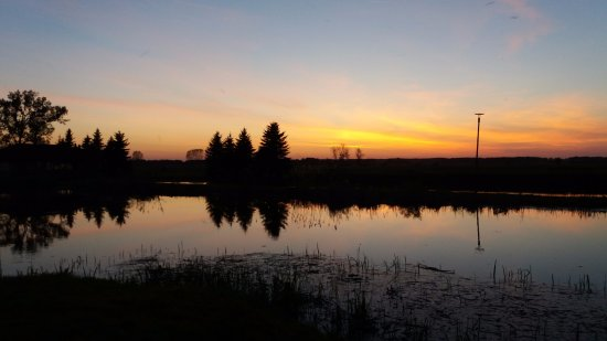 Bartlowizna Hotel and Restaurant: View over the marsh at sunset from the grounds