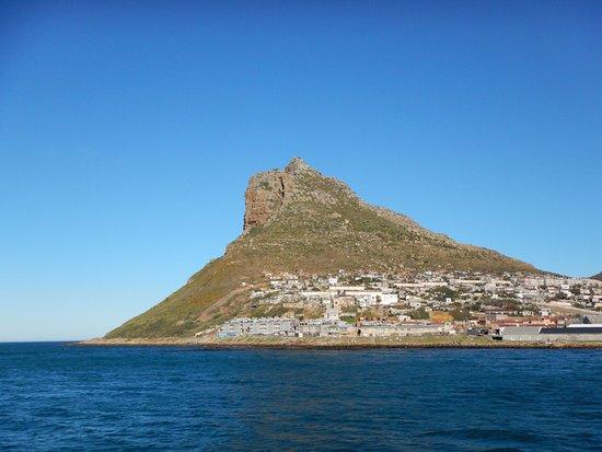 Cape Town, Afrique du Sud : La tête de lion vu de la baie