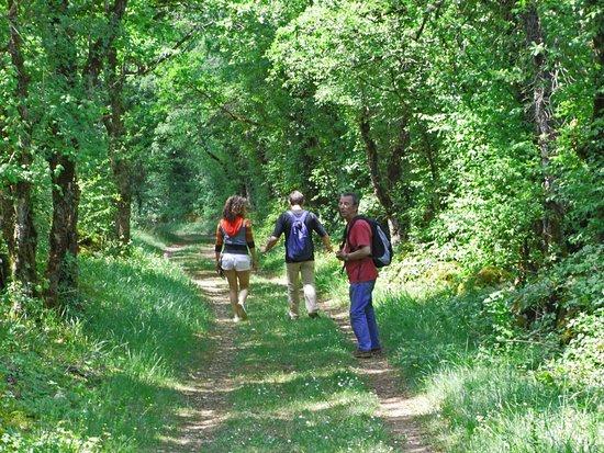 Villefranche-de-Rouergue, Fransa: randonnée sur le causse