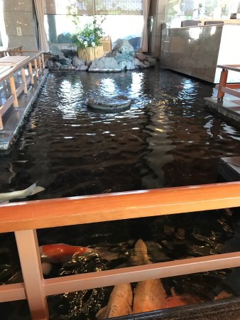 Shibata, Japan: good locathion