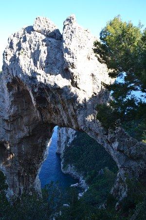 Natural Arch : Вид с обзорной площадки