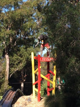 Merimbula, Australië: I am watching you....