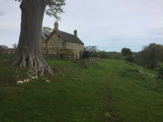 Coquet Bed and Breakfast: photo0.jpg