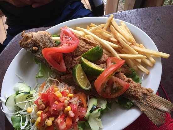 Backpackers Paradise Costa Linda: Fried Red Snapper