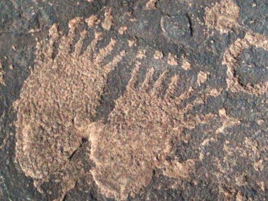 Ivins, Юта: Bear or bigfoot