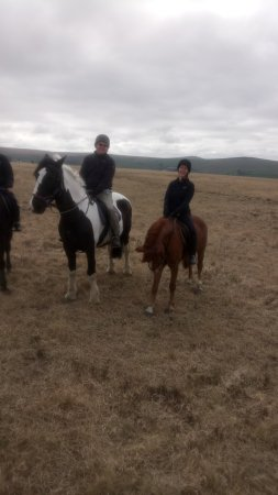 Cholwell Riding Stables: Photo of us both up on Dartmoor