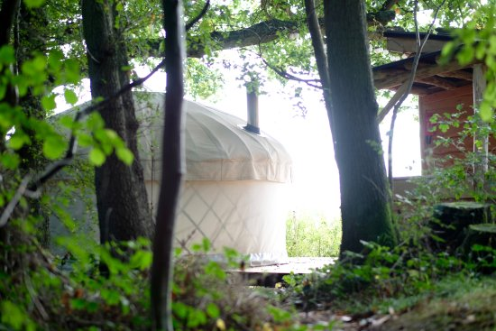 Bromyard, UK: The Yurt, with the kitchen and bathroom on the right, looking out over the Frome Valley and Malv