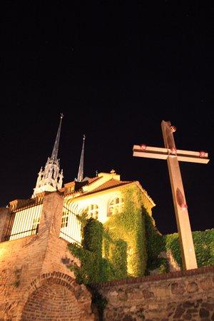 Brno, República Tcheca: Сам собор. Вид со смотровой площадки.