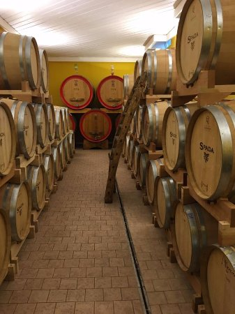 San Pietro in Cariano, Italia: The barrels