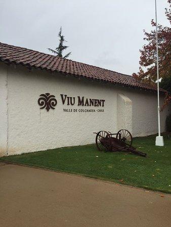 Santa Cruz, Chile: Vinícola
