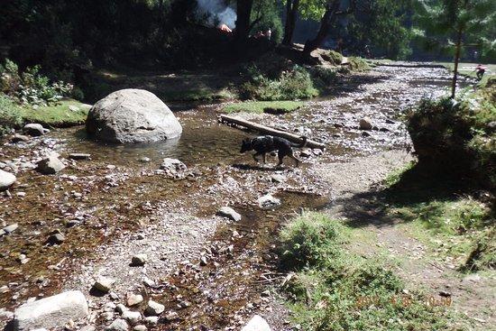 Potrero del Llano, المكسيك: despues de la presa el inicio del río