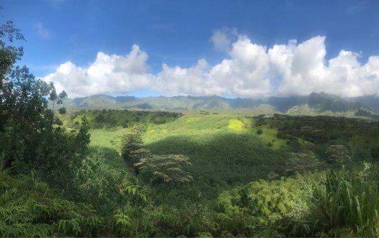Hanamaulu, Χαβάη: Kauai Backcountry Adventures