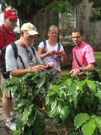 Провинция Картаго, Коста-Рика: Cultural Activities
