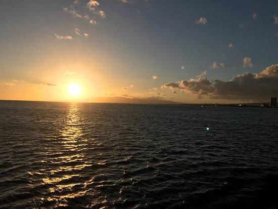 Star of Honolulu - Dinner and Whale Watch Cruises: photo8.jpg