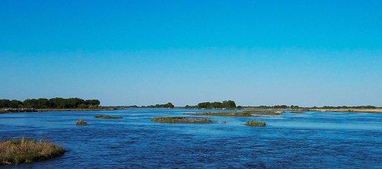 Kearney, NE: Platte River Crane Migration Habitat