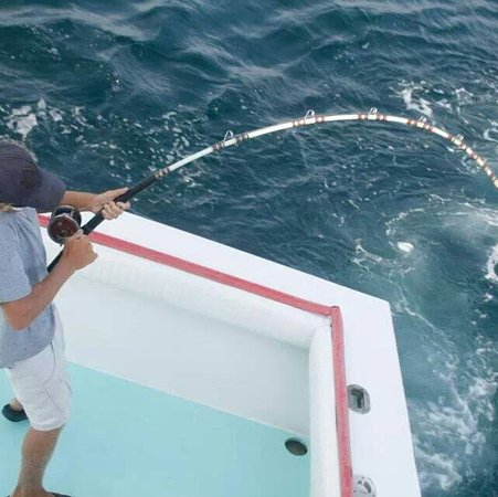 Pcb fishing charters panama city fl hours address for Pcb fishing charters