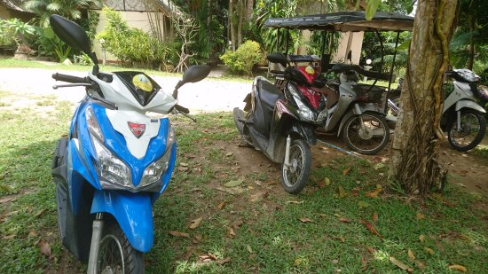 Lake Side Bungalow : Available scooters for rent (200 THB/1 day + gas)