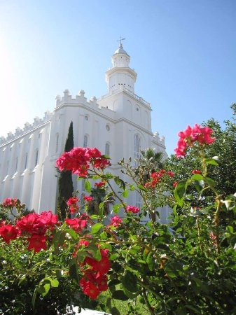 St. George, UT: the flowers that are on the Temple grounds were wonderful