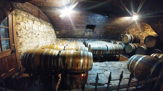 Hermann, MO: wine cellar