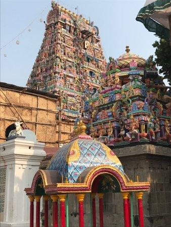 Kapaleeshwar Temple: photo5.jpg