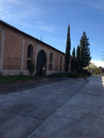 Lujan de Cuyo, Argentina: photo6.jpg