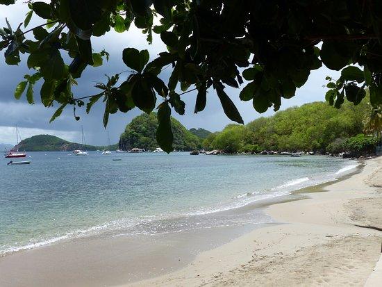 Terre-de-Haut, Guadeloupe: Vue de la plage de l'hôtel