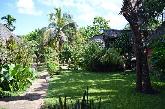 Ambatoloaka, Madagascar: le jardin est vraiment à découvrir