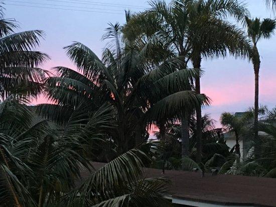 Ocean Palms Beach Resort ภาพ